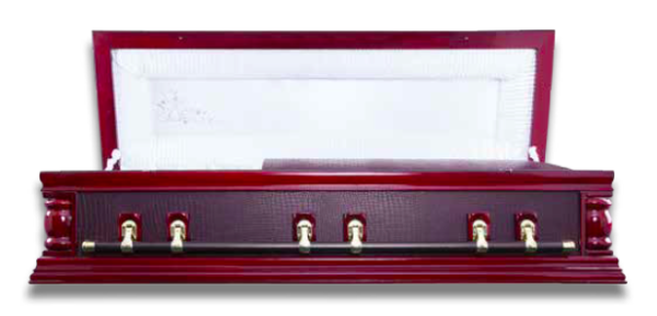 Skinz Leather Dome Casket